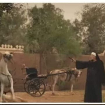 مصر.. محمد رمضان يكشف تفاصيل مشهد قتل الحصان المثير للجدل